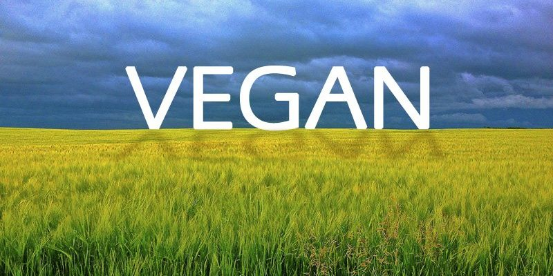 Vegan Food Supplements